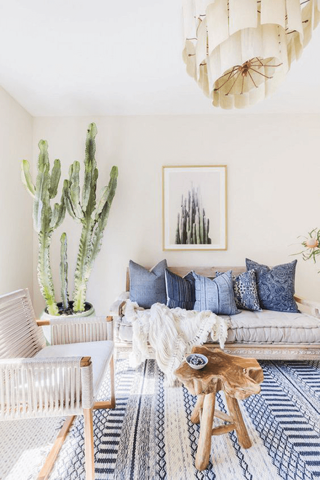 southwestern living room with cactus plants