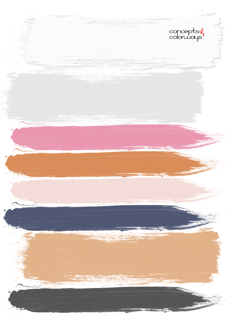 hot pink, blush pink, light gray, white walls, copper orange, navy blue, honey oak, charcoal grey, pink and navy, pantone sailor blue, paint palette