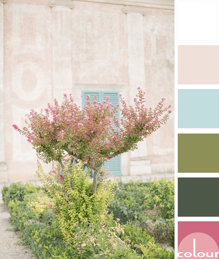 A Pink And Green Color Palette With A Touch Of Aqua Blue Concepts And Colorways