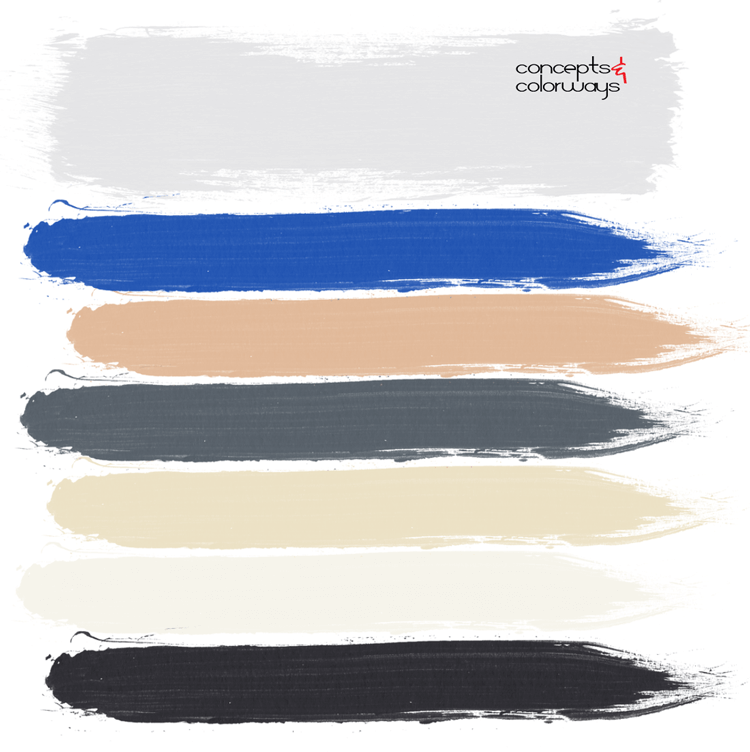 blue and gray, paint palette, cobalt blue, warm tan, cool gray, blonde, ivory, black, color schemes